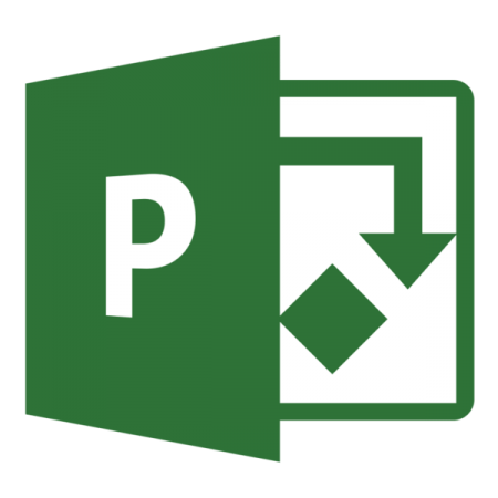 Microsoft Project Server 2016