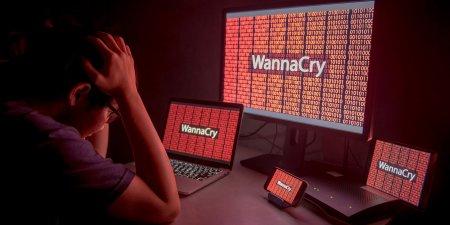 Синий экран смерти защитил большинство систем на базе Windows XP от WannaCry